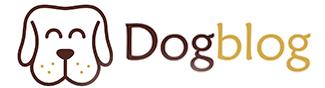 dog blog